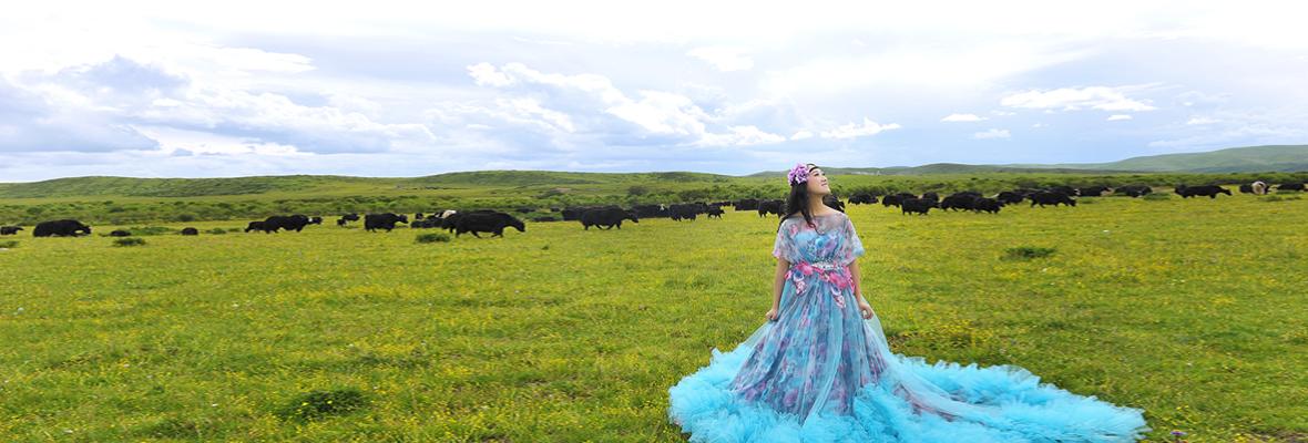 若尔盖旅行拍摄草原婚纱唯美简单婚纱照